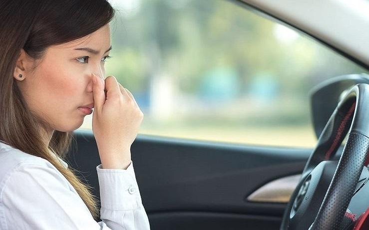 Убрать запах из автомобиля можно очень быстро
