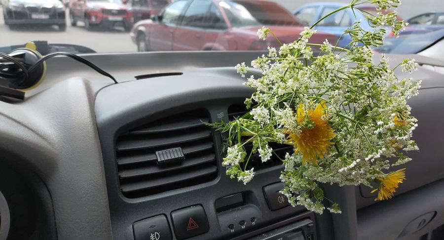 Какие автомобильные ароматизаторы лучше для салона машины